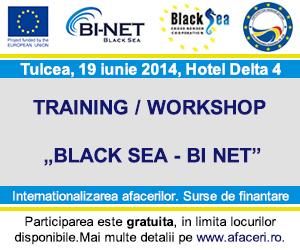 Banner Conferinta afaceri Tulcea 300x250 px
